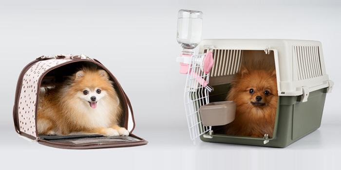 飛機籠較寵物袋寬敞及通風,減少狗隻中暑機會。