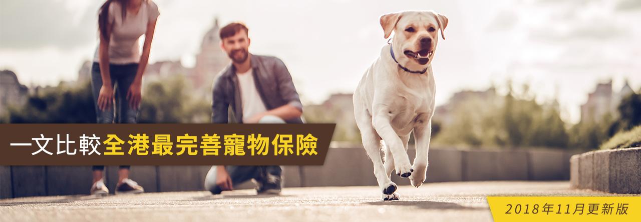 一文比較全港最完善寵物保險 (2018年11月更新版)