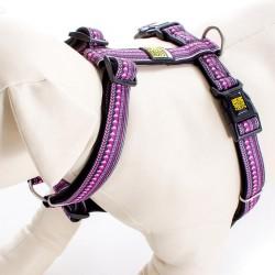 Max & Molly - 紫色民族紋 H 型胸帶 - 加細