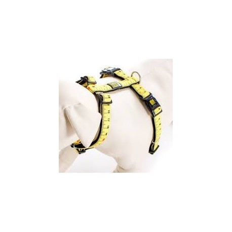 Max & Molly - 尺紋 H 型胸帶 - 大