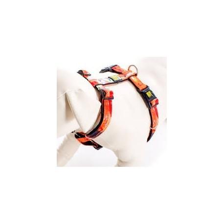 Max & Molly - 熱情紋 H 型胸帶 - 加細