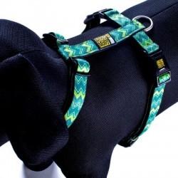 Max & Molly - 懷舊紋 H 型胸帶 - 中