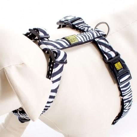 Max & Molly - 經典斑馬紋 H 型胸帶 - 加細