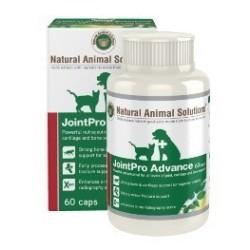 Natural Animal Solutions - 醫療級骨粉 - 60 粒 到期日:2020-02-28