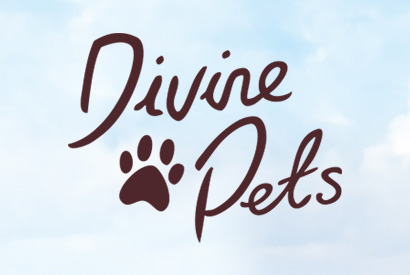 Divine Pets