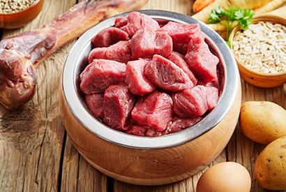 貓狗糧中的「肉類副產品」是甚麼?
