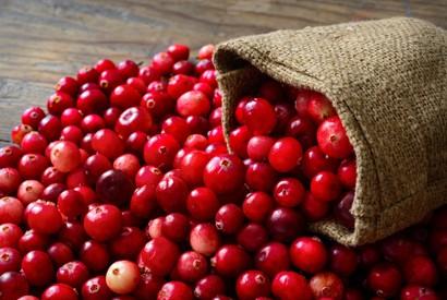 防尿道膀胱炎 - 小紅莓