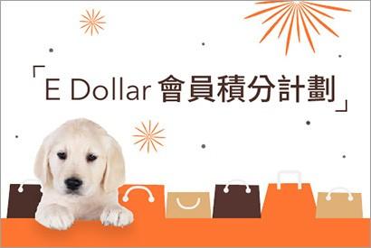 E Dollar 會員積分計劃